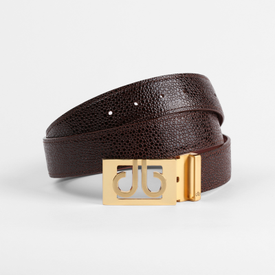 Shiny Brown Belt with Classic Gold Thru Buckle